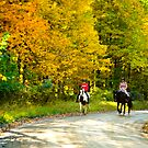 Fall Riders in the Country by Mary Campbell