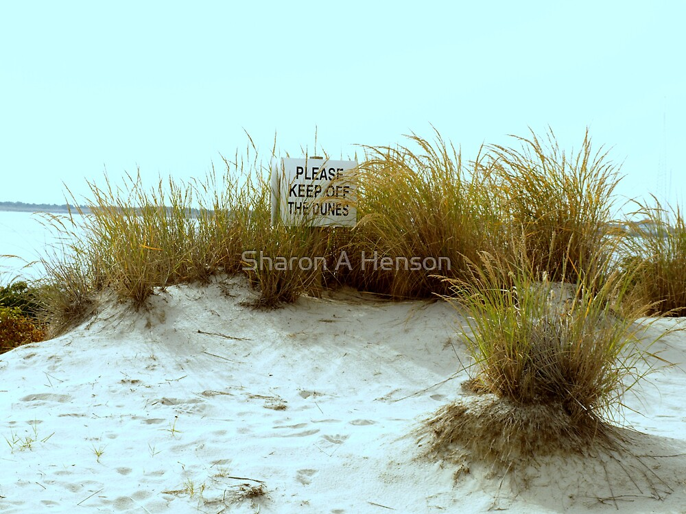 STAY OFF THE DUNES .........PLEASE by Sharon A. Henson