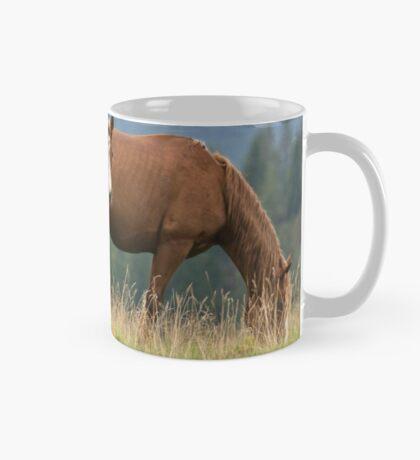 Hey Mom! Who is she? Mug