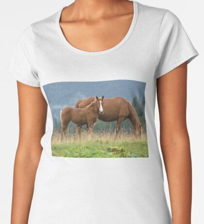 Hey Mom! Who is she? Women's Premium T-Shirt