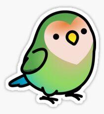 Chubby Seagreen Peach-faced Lovebird  Sticker