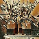 flowers in a vase by Terry Collett