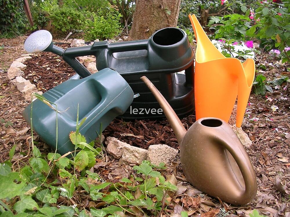 Job Done  (Garden watering cans) by lezvee