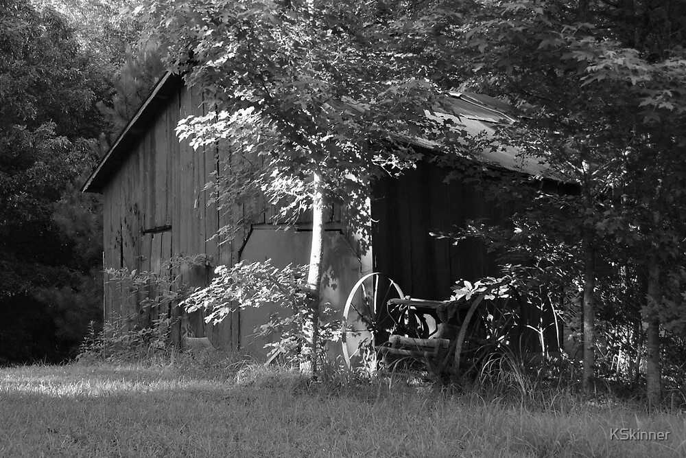 Barn in Afternoon Light by KSkinner