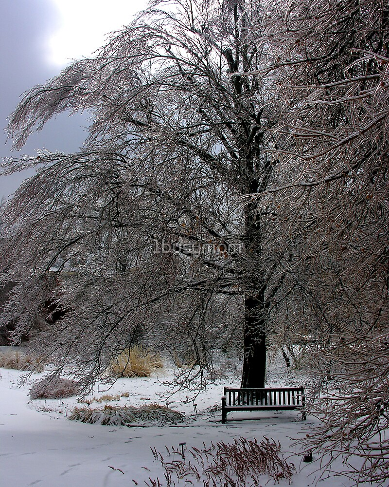 empty bench after the storm by 1busymom