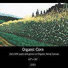 ORGANIC CORN by Sam Dantone