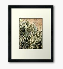 Sage Sparrow Framed Print