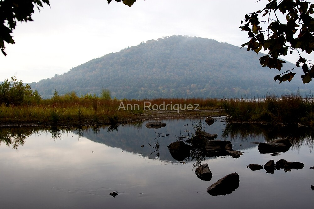 Fall Reflections by Ann Rodriquez