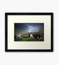 Easter Lamb  Framed Print
