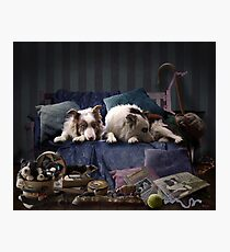 Must love Border Collie's  Photographic Print