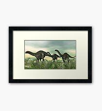 Apatosaurus Framed Print
