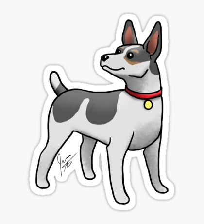 Rat Terrier Sticker