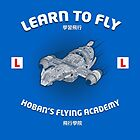Learn to Fly by tombst0ne