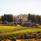 Tuscany Mansion - Italy by Yannik Hay