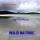 Wild Nature - Top Ten Banner by BlueMoonRose