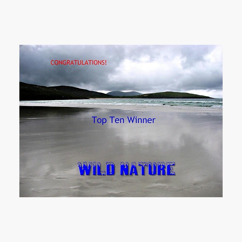 Wilde Natur - Top Ten Banner Fotodruck