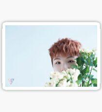 Seventeen Woozi/Jihoon Teen, Age Sticker