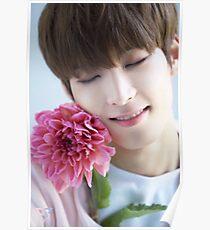Seventeen Wonwoo Teen, Age Poster