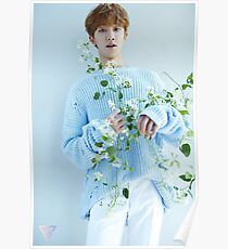 Seventeen The8/Minghao Teen, Age Poster