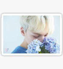Seventeen Vernon/Hansol Teen, Age Sticker