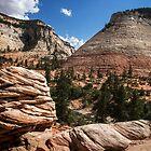 Checkerboard Mesa, Zion National Park, Utah by Marissa Mancini