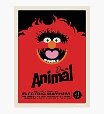 Animal Poster Photographic Print