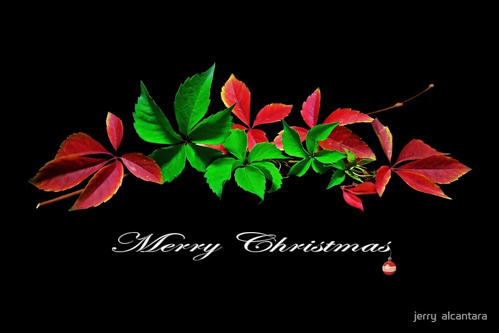 Merry Xmas by jerry  alcantara