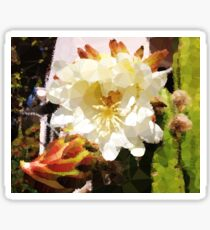 Cactus Flower Low Poly Desert Garden Sticker