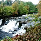 Aysgarth Falls by newbeltane