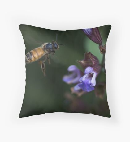 Sage and Honey Throw Pillow