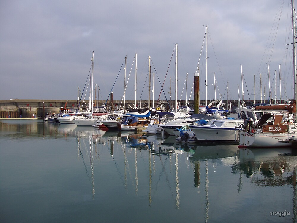 Boats in the Marina by moggie