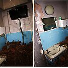 overgrown toilet by evilpigeon
