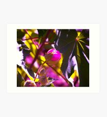 This Buds for You!! Art Print