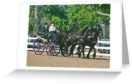 Stylized photo of a woman driving an Andalusian horse-drawn carriage in dressage competition at Del Mar Horsepark in Del Mar, CA US. by NaturaLight