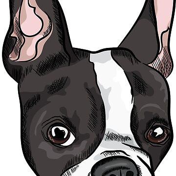 Cute french bulldog head print by TorriPhoto