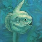 Sunfish / Mola Mola by clipsocallipso