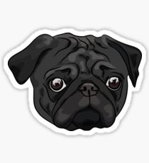 Cute black pug portrait Sticker