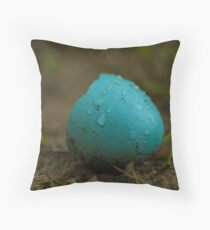 Hatched Robin's Egg Throw Pillow