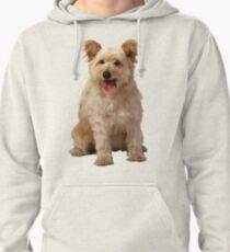 Cute dog Pullover Hoodie