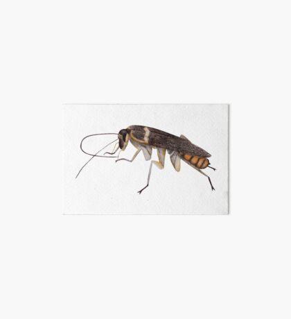 Cockroach Art Board Print