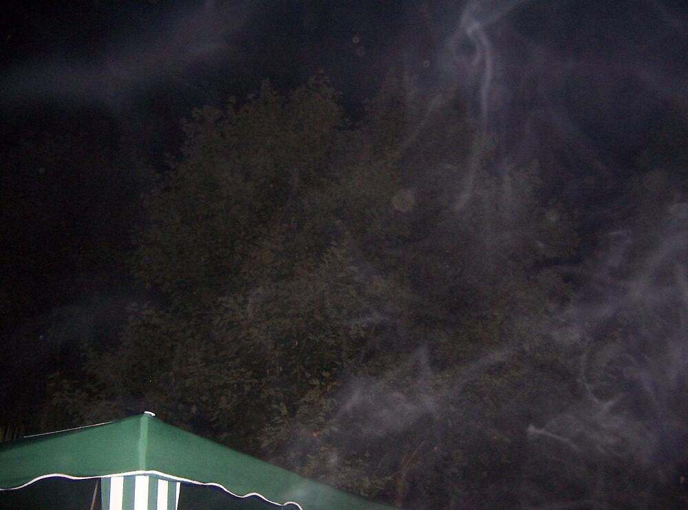 Spirit mist at the B B Q by kimie