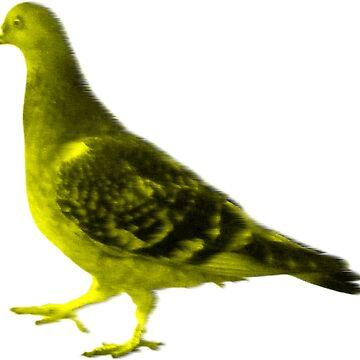 Pigeon #1 by radpidgeons