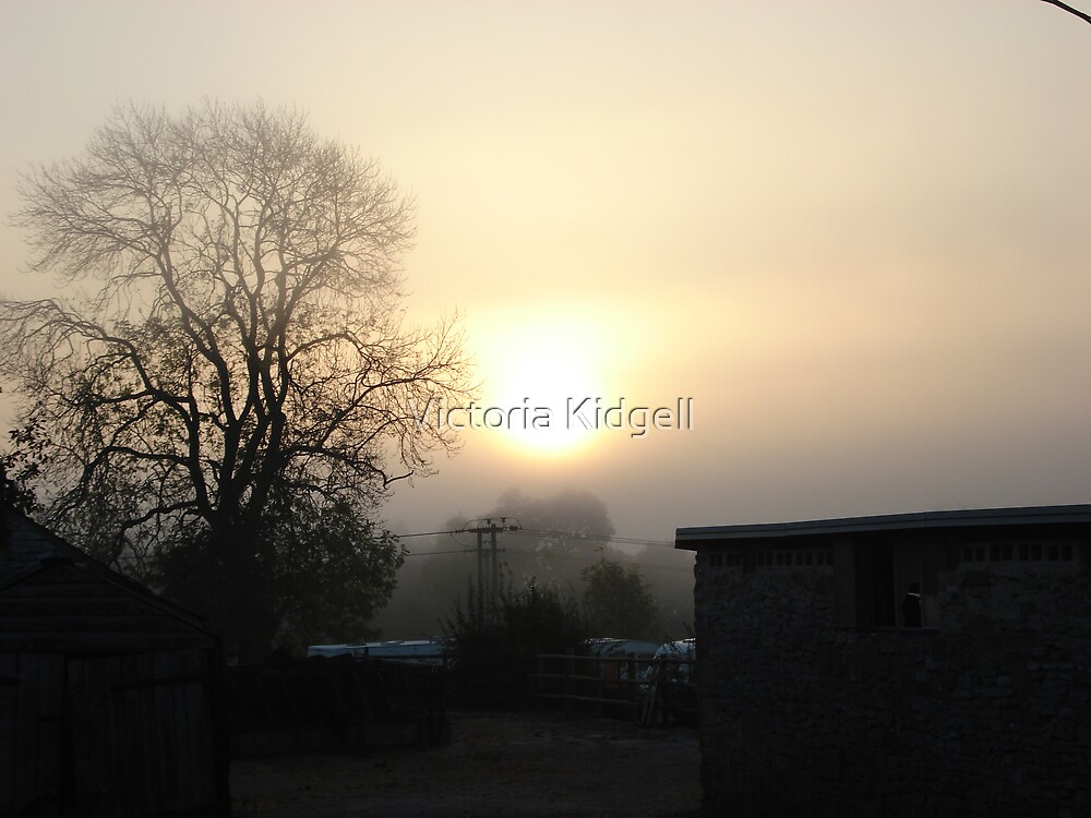 Misty morning on the farm by Victoria Kidgell