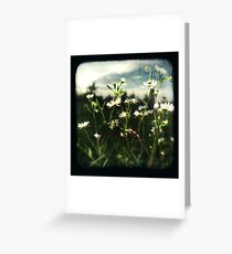 TTV #1 Greeting Card