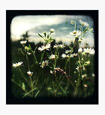 TTV #1 Photographic Print