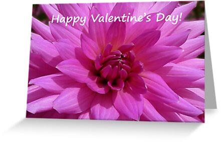 Dahlia - Happy Valentine's Day! by Evelyn Laeschke