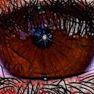 Brown Eye by Virginia N. Fred