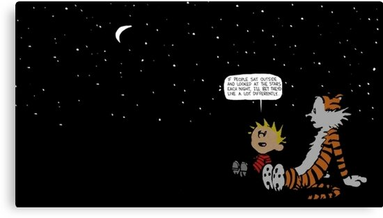 Calvin and Hobbes Night Sky\