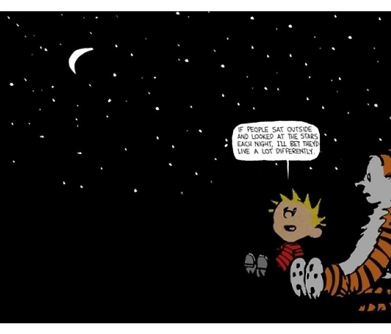 Calvin Y Hobbes: Tazas | Redbubble
