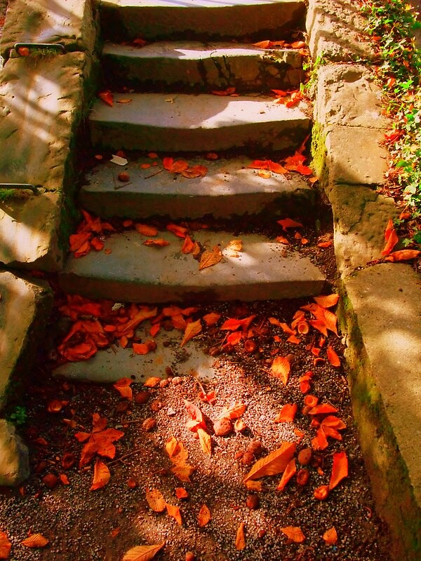 Steps by crazytinetty
